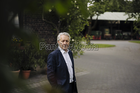 portrait of a senior businessman in