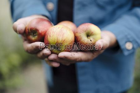 close up of man holding organic
