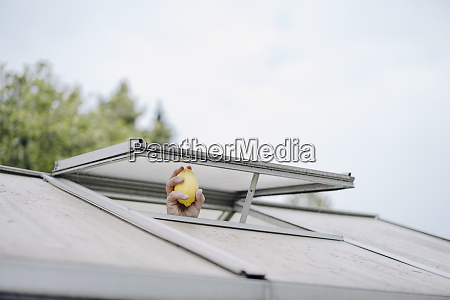 hand holding lemon out of roof