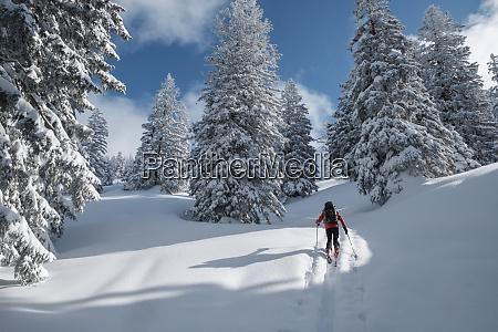 senior man during ski tour inzell