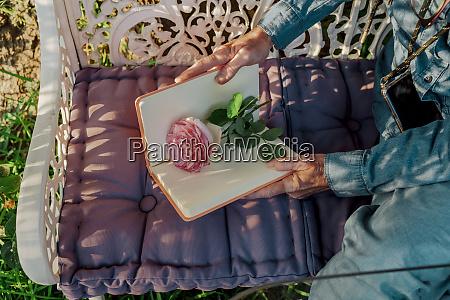 crop view of senior woman sitting