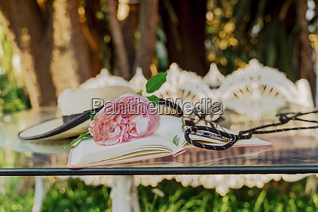 summer hat book pink rose blossom
