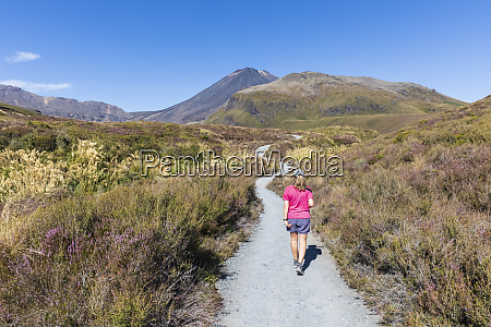 new zealand ruapehudistrict female hiker walking