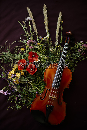 studio shot of violin leaning on