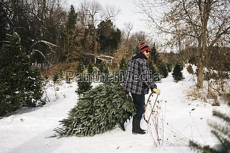 man pulling christmas tree while walking