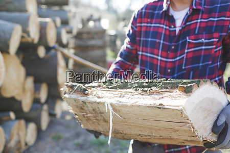 lumberjack holding chopped log in forest