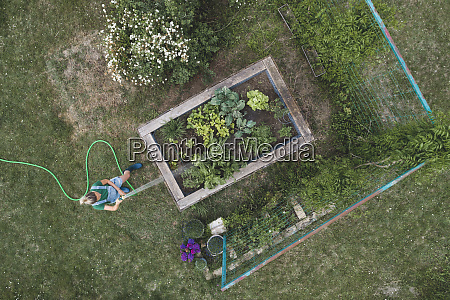 drone shot of woman watering plants