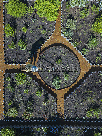 woman gardening aerial view