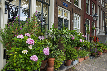 the netherlands north holland province amsterdam