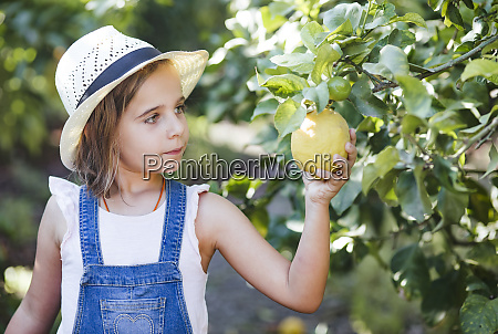 girl picking fruit in garden