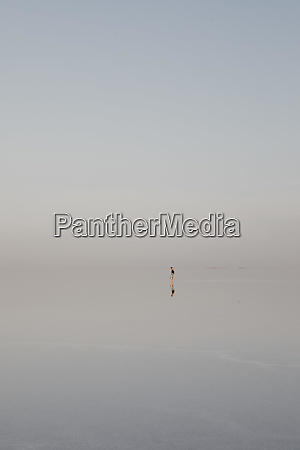 distant view of woman standing at