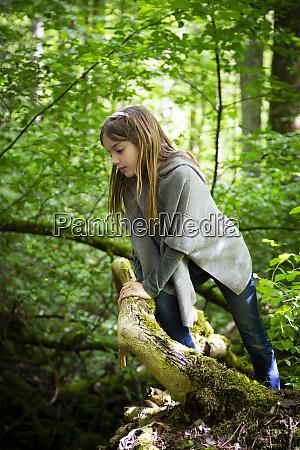 cute girl climbing on tree in