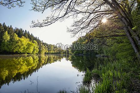 germany bavaria egling thanninger weiher lake