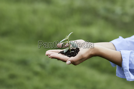 hands holding plant and soil
