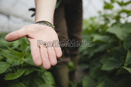 farmer holding a ladybug in his