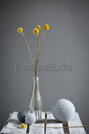 wool spheres and bottlewith blooming billy
