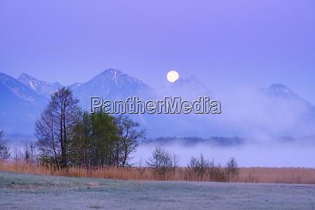 germany bavaria halblech bannwaldseelake at foggy