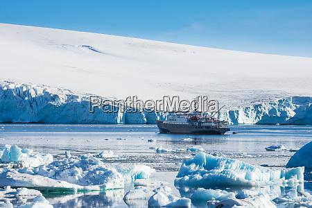 cruise ship in hope bay