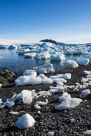 ice floating along shore of hope