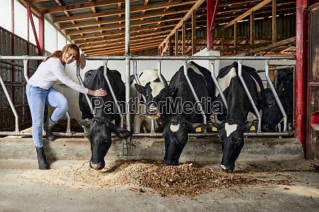 smiling female farmer stroking cattle eating