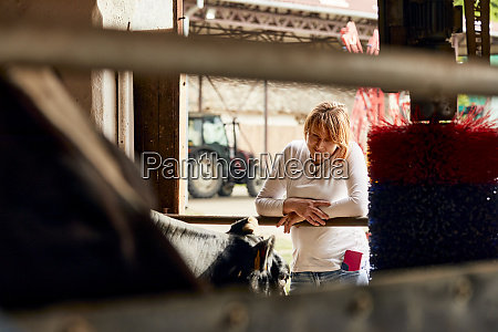 mid adult woman looking at cow