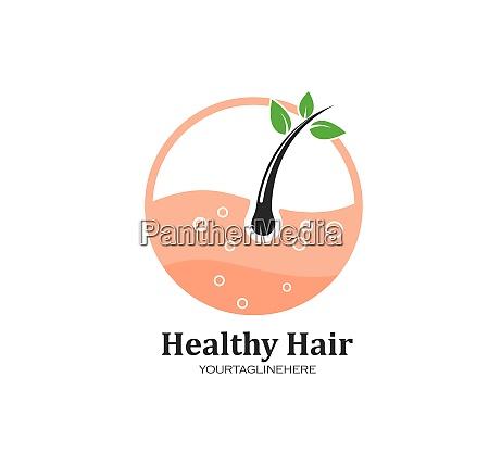 hair root icon vector illustration design