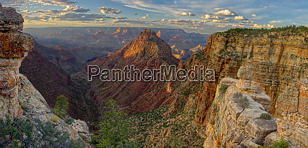 panorama of grand canyon viewed from