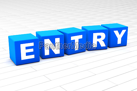 3d illustration of the word entry