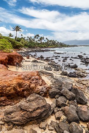 a rugged colourful beach and tropical