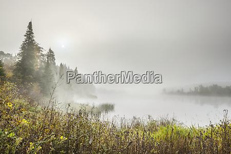 dense fog over a tranquil lake