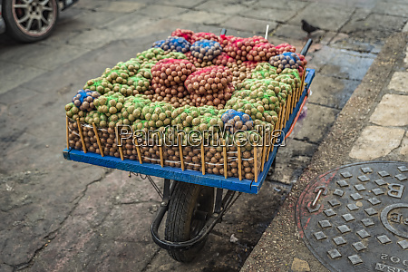 macadamia nuts for sale in the