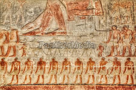 reliefs mastaba of mereruka necropolis of