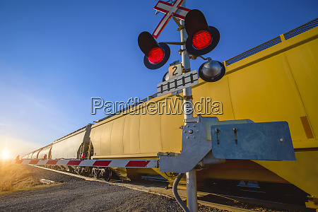 yellow train cars on a freight