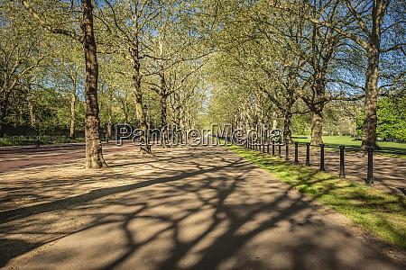 green park cycle lane at morning