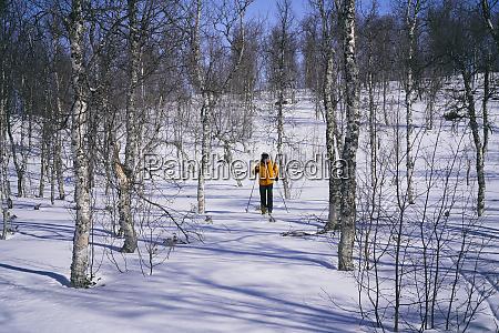 man cross country skiing in vasterbottens