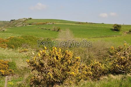 rural landscape in brittany