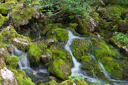 water cataract with green moss