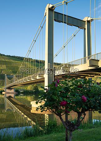 bridge wehlen moselle germany