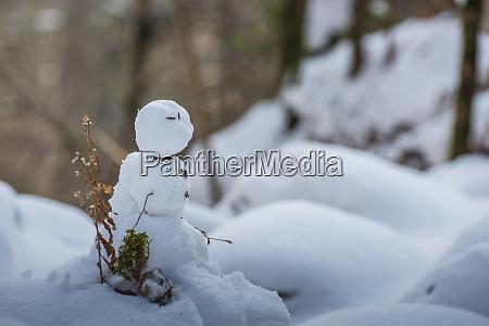 kleiner, schneemann, im, winter - 28819929