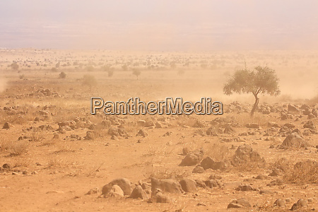 dusty plains during a drought