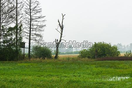 wet and rainy weather in benediktbeuern