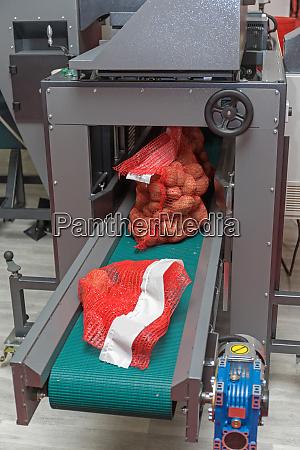 potato packing machinery
