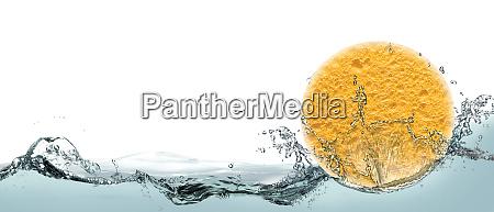 sponge soft cleansing sponge for the