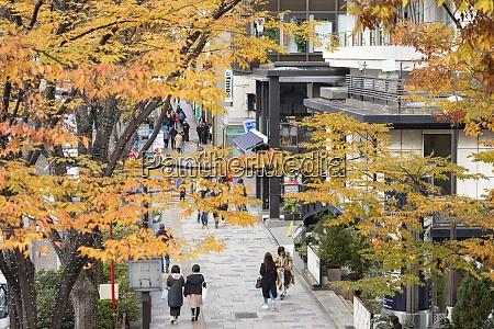 people walking along omotesando street harajuku