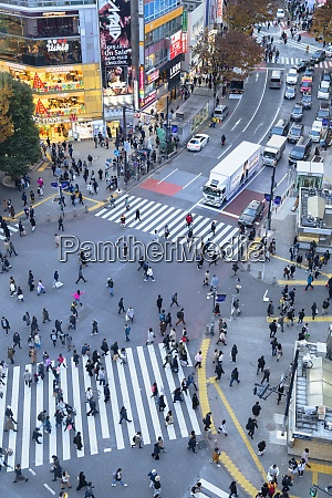 people crossing shibuya crossing shibuya tokyo