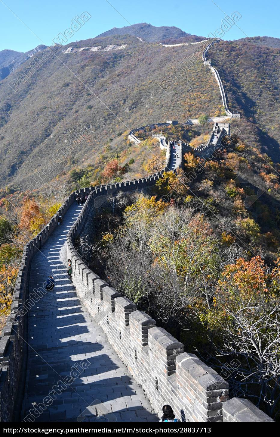 great, wall, of, china, , mutianyu, section, - 28837713