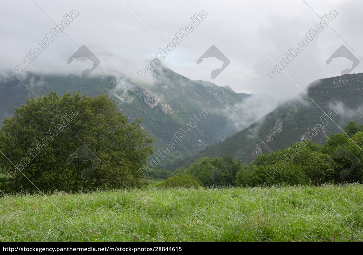 picos, de, europa - 28844615