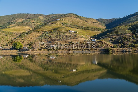 douro valley and river
