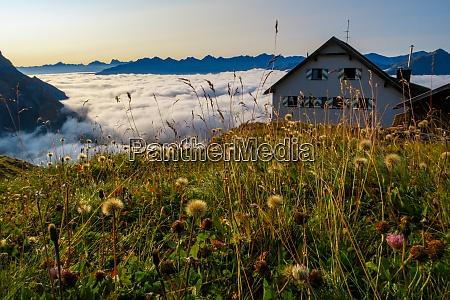 mountain hut in the austria alps