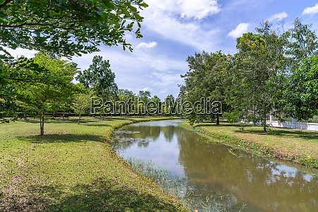 garden park meadow with river and